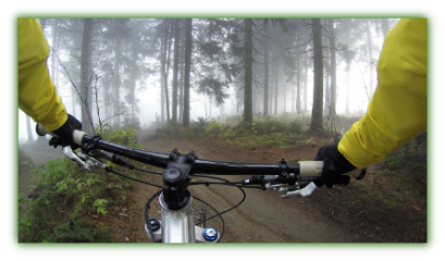 Cycling outdoors in forest